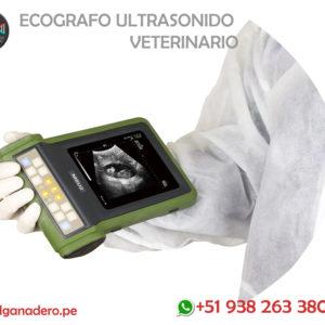 Ecógrafos Veterinarios